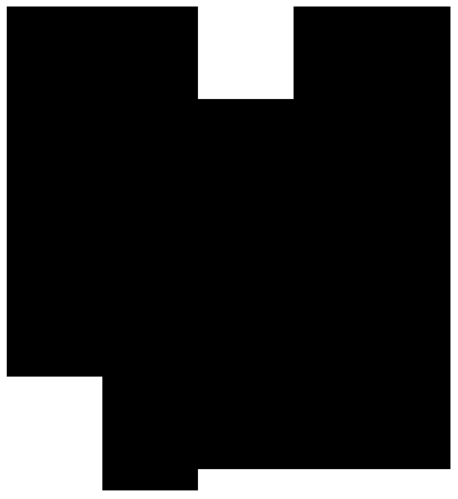 Star Weingut Groiß BioWein