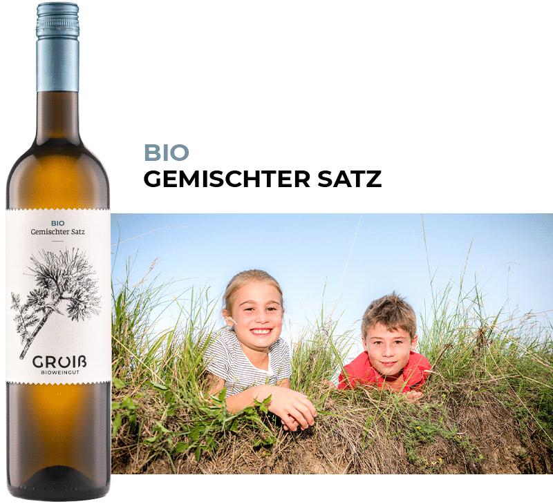 Wein 2 Beschreibung
